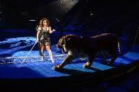 Цирковое шоу, Фото: 135