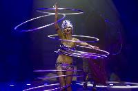 Шоу фонтанов «13 месяцев» в Тульском цирке – подарите себе и близким путевку в сказку!, Фото: 53