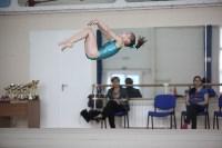 Соревнования по спортивной гимнастике на призы Заслуженных мастеров спорта , Фото: 65