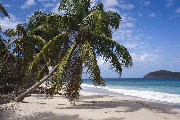 Дикий пляж Карибского моря.