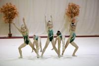 """Соревнования по художественной гимнастике """"Осенний вальс"""", Фото: 128"""