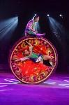 Цирковое шоу, Фото: 83