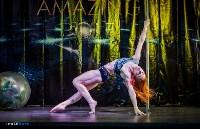 Pole dance в Туле: спорт, не имеющий границ, Фото: 13