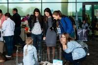 Благотворительный фестиваль помощи животным, Фото: 19