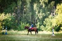 Новые лошади для конной полиции в Центральном парке, Фото: 8