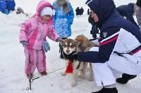 Праздник северных собак на Куликовом поле , Фото: 7