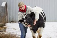 Фермерское хозяйство Людмилы Коробовой, Фото: 4