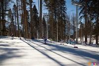 Состязания лыжников в Сочи., Фото: 47