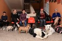 """Выставки собак в ДК """"Косогорец"""", Фото: 43"""