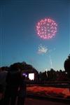 """Фейерверк в честь """"Арсенала"""" в Центральном парке. 16 мая 2014, Фото: 28"""