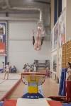 Первенство ЦФО по спортивной гимнастике, Фото: 204