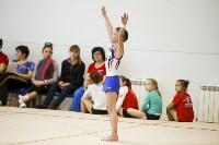Спортивная гимнастика в Туле 3.12, Фото: 23