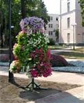 Улицы Тулы украсят необычные цветочные композиции, Фото: 4