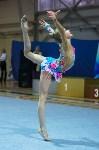 Соревнования по художественной гимнастике 31 марта-1 апреля 2016 года, Фото: 63