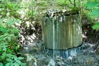 В реку Иншинку несколько лет стекает канализация, Фото: 6