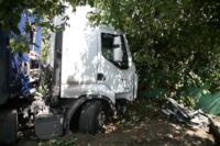 В Барсуках фура влетела в огород и сломала дерево, Фото: 6