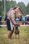 Международная выставка собак, Барсучок. 5.09.2015, Фото: 26