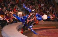 Новая программа в тульском цирке, Фото: 3