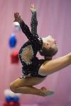 Соревнования по художественной гимнастике 31 марта-1 апреля 2016 года, Фото: 133