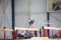 Соревнования по спортивной гимнастике на призы Заслуженных мастеров спорта , Фото: 47
