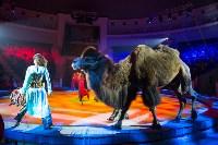 Тульский цирк, Фото: 68