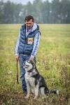 Международная выставка собак, Барсучок. 5.09.2015, Фото: 52