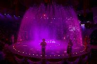 Шоу фонтанов «13 месяцев» в Тульском цирке – подарите себе и близким путевку в сказку!, Фото: 106