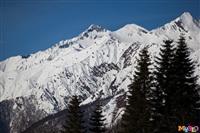 Состязания лыжников в Сочи., Фото: 64