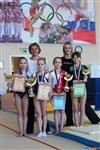 Региональное первенство по спортивной гимнастике. 20 -22 марта 2014, Фото: 3
