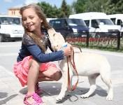 Собака от президента. 1 июня 2015, Фото: 13