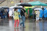 Фестиваль Крапивы - 2014, Фото: 151