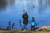 Солнечный день в Белоусовском парке, Фото: 46
