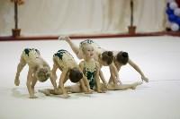 """Соревнования по художественной гимнастике """"Осенний вальс"""", Фото: 132"""