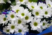 Ассортимент тульских цветочных магазинов. 28.02.2015, Фото: 20