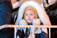 На площади Ленина прошло закрытие главной городской ёлки, Фото: 65