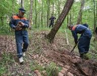 В лесу под Тулой поисковики нашли тайник с гранатами, Фото: 33