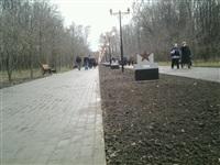 Открытие аллеи Победителей в Центральном парке Тулы, Фото: 6