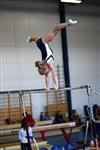 Региональное первенство по спортивной гимнастике. 20 -22 марта 2014, Фото: 6