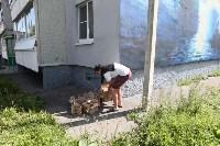 Граффити в Иншинке. Айвазовский. , Фото: 4