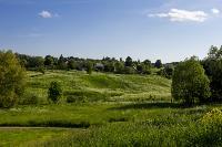 Летний день в Ясной Поляне, Фото: 20