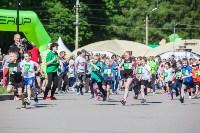 Essity Тульский полумарафон собрал 850 спортсменов со всей России, Фото: 142