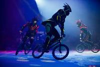 Шоу фонтанов «13 месяцев»: успей увидеть уникальную программу в Тульском цирке, Фото: 154