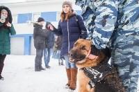 """""""Студенческий десант"""" - 2017., Фото: 60"""