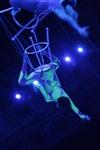 Aqua Show в Тульском цирке, Фото: 1