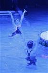 Aqua Show в Тульском цирке, Фото: 5
