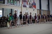 Соревнования по спортивной гимнастике на призы Заслуженных мастеров спорта , Фото: 4