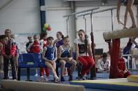 Соревнования по спортивной гимнастике на призы Заслуженных мастеров спорта , Фото: 61
