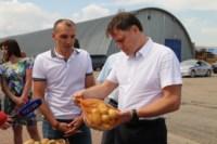 Уборка урожая в Веневском районе. 04.08.2014, Фото: 12