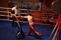 В Туле прошла матчевая встреча звезд кикбоксинга, Фото: 61
