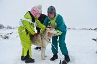 Праздник северных собак на Куликовом поле , Фото: 24